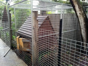 Fox proof Chicken house coop recycled timber melbourne