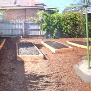 A few raised garden beds – Heidelberg