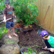 Building a rainfed pond