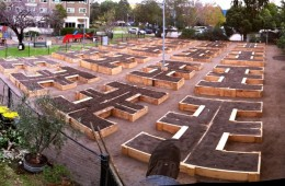 Community Garden Refurbishment