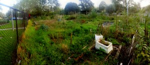 Libertas Gardens - Cultivating Community