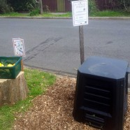 Another guerilla garden in Northcote!