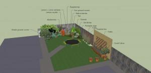 Garden design garden consultation Melbourne