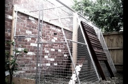 Luxurious fox proofed chicken coop – Thornbury