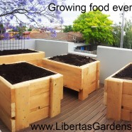 Rooftop garden – Richmond