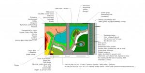 Garden design melbourne brunswick toorak